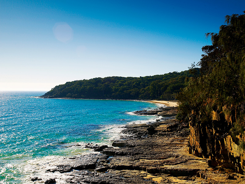 Tea Tree Bay, Noosa National Park